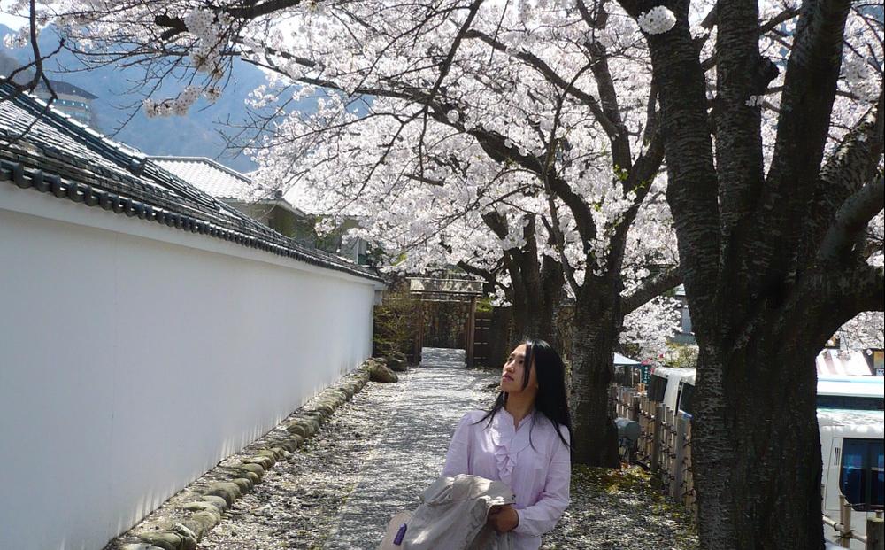 用簡單的日文自助遊日本